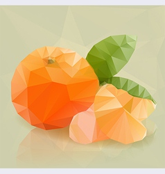 Fresh orange fruit in modern triangulated style vector image vector image