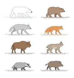 Animals motion vector