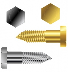 metal screws vector image vector image
