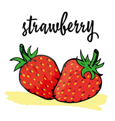 ripe strawberry vector image