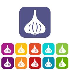 garlic icons set flat vector image vector image