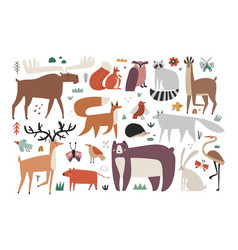 Collection hand drawn woodland animals vector