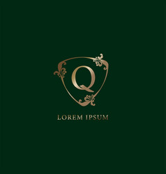 Letter q alphabetic logo design template luxury vector