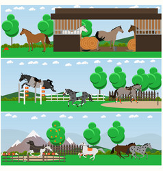 Set of horse riding interior flat posters vector