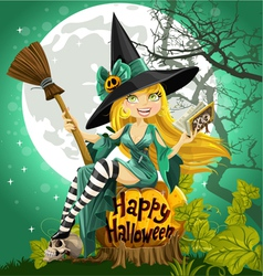 Beautiful young witch with a book and broom vector