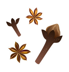Cloves and star anise set vector