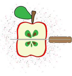 red apple on the white vector image