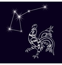 Rooster Constellation Realistic star White cock vector image