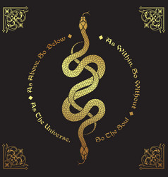 two gold serpents intertwined as above so below vector image