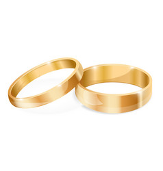 wedding gold rings vector image