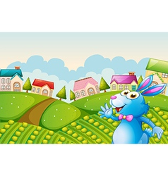 A bunny at the field vector image