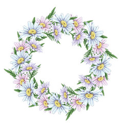 beautiful delicate wreath daisies frame vector image