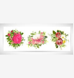 floral template design bouquet vector image