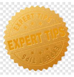 Gold expert tips medallion stamp vector