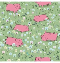 Happy Pigs on the blossoming field vector image