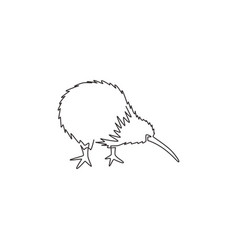one continuous line drawing little kiwi bird vector image