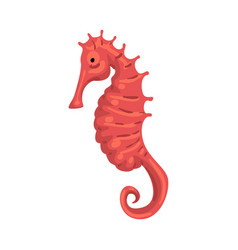seahorse or hippocampus marine life element sea vector image