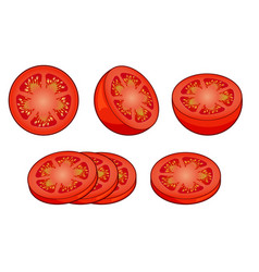 Set of fresh red tomato slices isolated on white vector