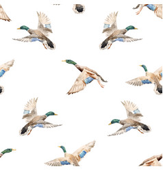 Watercolor pattern with ducks vector