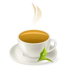 cup of hot green tea vector image vector image