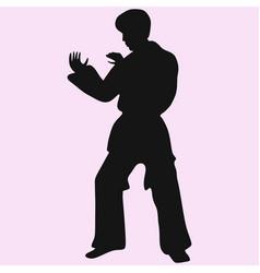 karate man vector image