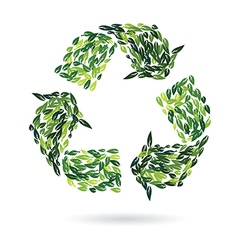 recycling sign from leaves vector image