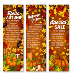 autumn vegetable leaf banner on wood background vector image