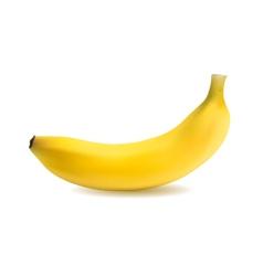 banana object vector image