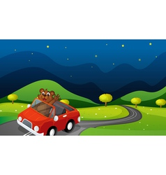 bear and car vector image