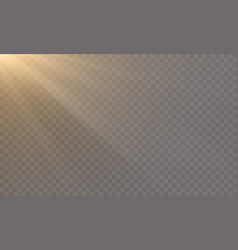 glowing light shine on transparent background vector image