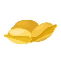Pasta products Ravioli vector image