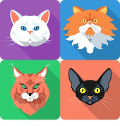 Set icon cats flat design vector image vector image