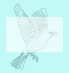 a bird vector image