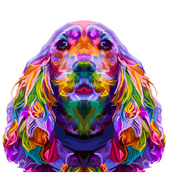 colorful cocker spaniel isolated on pop art style vector image