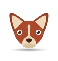 Lovely head puppy dog chihuahua brown vector