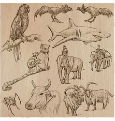 animals - an hand drawn pack vector image vector image
