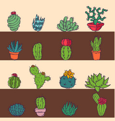cactus home nature card of vector image
