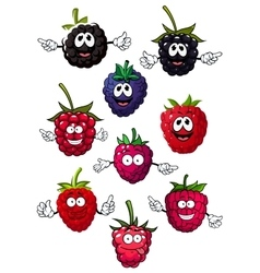 Funny raspberry blueberry and blackberry vector