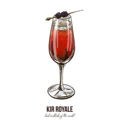 kir royale cocktail vector image