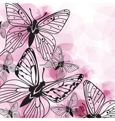 Various butterflies on background vector image