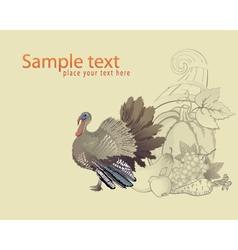 Thanksgiving turkey and cornucopia vector image vector image