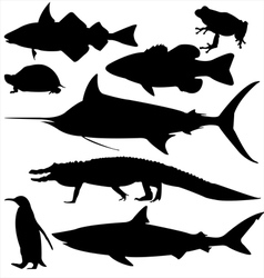 Eight aquatic vector