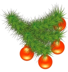 New Year branch of pine vector image