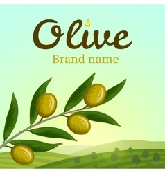 Olive label logo design Olive branch vector