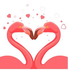 pink flamingo kissing love birds vector image