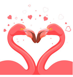 pink flamingo kissing love of birds vector image