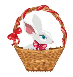 Easter Bunny in Basket vector image vector image