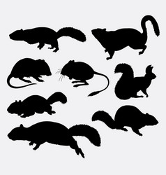 squirrel rat and mouse animal silhouette vector image