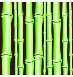 Background from bamboo vector