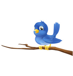 bluebird on tree branch vector image
